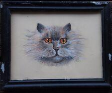 Dessin pastel portrait de chat signé HB *