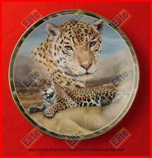 "Charles Frace Soul of the Wild Collector Plate ""First Light"" Bradford Exchange"