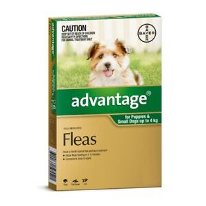 Advantage Flea Treatment for Small Dogs and Puppies Under 4kg Green