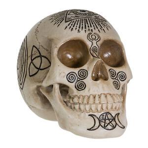 Witchcraft Skull Figurine Statue Skeleton Halloween
