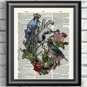 Anatomical Heart and Birds on Antique Dictionary Book Page Picture Gift Idea