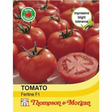 Thompson & Morgan - Vegetables - Tomato Ferline F1 Hybrid - 15 Seed