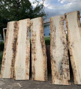 Bohlen Brett Holz Unbesäumt Mit Baumkante 1 Stück 50cm Regal Garderobe