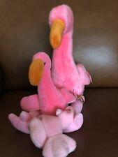 ty beanie Pinky