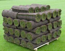 30 Square Meters Of Lawn Turf