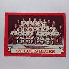 1973-74 OPC O-Pee-Chee #105 St. Louis Blues Team Card - NM