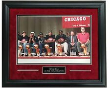 Chicago Bulls Celebrate Their 6th Championship!!  Deluxe Suede Framed 16x20