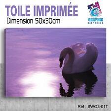 50x30cm - TOILE IMPRIMÉE TABLEAU  POSTER DECO - SWAN - SIGNE - OISEAUX - SW3-01T
