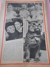 Chat Abyssin de 8kg Les 3 jumeaux de Gabrill Australie Print 1936