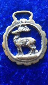 Stag- Horse Brass Piece
