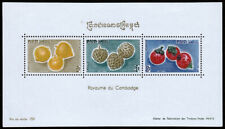 Cambodia Scott 111a (1962) Mint LH VF Souvenir Sheet C
