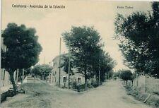 Año 1910. Tarjeta Postal. CALAHORRA. Logroño. Avenidas de la Estación.