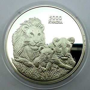 Zambia 5000 Kwacha 1999 Silver coin Proof Endangered Wildlife - Lions pride !