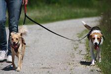 zwillingsleine doppelleine Laisse Laisse de couplage pour 2 chiens jusqu'à 15kg