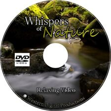 DVD Relaxing Northwest Rainforest Nature Ambient Therapeutic Soothing Calm Video