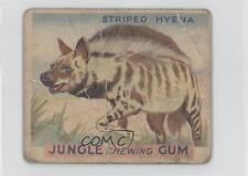 1930 World Wide Gum Jungle R78 #21 Striped Hyena Non-Sports Card 0s4