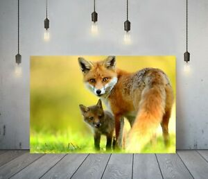 LITTLE FOX 2- DEEP FRAMED CANVAS WALL ART PICTURE PRINT- ANIMAL ORANGE GREEN
