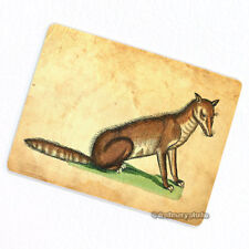 Renaissance Fox Deco Magnet, Decorative Gift Fridge Antique Animal Illustration