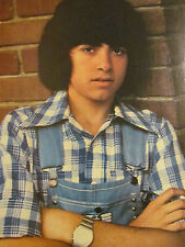 Tony DeFranco, The DeFranco Family, Full Page Vintage Pinup