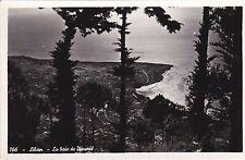 LEBANON - La Baie de Djounié - Photo Postcard 1953