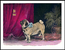 PUG LITTLE DOG WATCHES BUTTERFLIES LOVELY VINTAGE IMAGE ON DOG PRINT POSTER