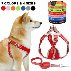 Reflcetive No Pull Dog Harness Leash Mesh Personalized Embroidered Collar XS-L