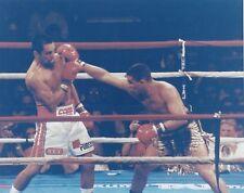 HECTOR MACHO CAMACHO vs ROBERTO DURAN 8X10 PHOTO BOXING PICTURE