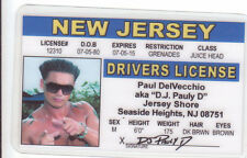 Jersey Shore Paul DelVecchio D J Pauly D Seaside Heights NJ card Drivers License