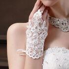 Bridal Gloves Lace Flower&Rhinestone Bride Fingerless For Dress Wedding Party