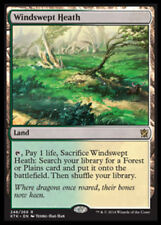 Windswept Heath x1 Magic the Gathering 1x Khans of Tarkir mtg card