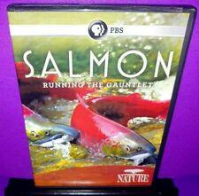 PBS Nature: Salmon - Running the Gauntlet (DVD, 2011) B596