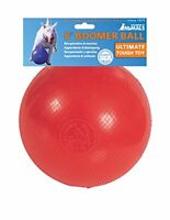 Boomer Ball 8  20cm diameter Colour may vary
