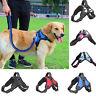 No-pull Dog Harness Pet Puppy Large Dog Vest Padded Handle Adjustable S/M/L/XL