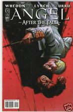 A364 ANGEL AFTER THE FALL #5  Variant Cover BUFFY  1/10