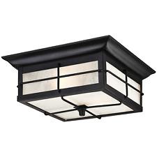 Westinghouse Lighting 6204800 Orwell 2 Light Outdoor Flush Mount Fixture, Black