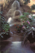 postcard  Yorkshire   Leeds Tropical World Roundhay Park unposted