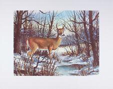 Vintage ART PRINT White Tailed Deer W. HAROLD HANCOCK Wildlife 16x20 Mint BUCK