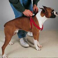 TWO-STEP DOG HARNESS - Nylon Two Simple Steps Dog Canine Harness