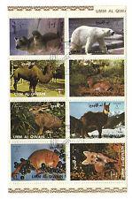 - bloc 8 timbres oblitérés animaux sauvages -