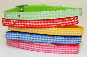Cat Collar Kitten collar safety release system Gingham style collar