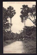 INDOCHINE COCHINCHINE  GIA DINH la route aux deux palmiers