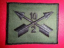 US Army 2nd Battalion 10th Special Forces Group Subdued Patch