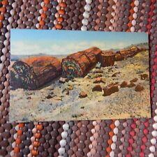 Vintage Postcard ARIZONA - Logs of Stone, Petrified Forest, AZ