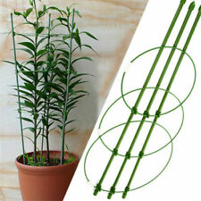 Plant Ties & Supports