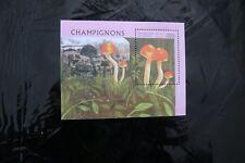 Guinea 1353 Mushrooms-Hygrophorus  souvenir sheet block MNH 1996