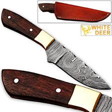 WHITE DEER Japanese 1095HC Steel Handmade Damascus Hunting Knife Wood Handle