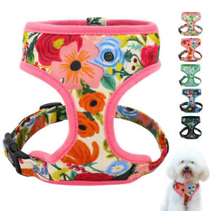 Cute Floral Dog Harness Soft Mesh Walking Vest for Small Medium Dogs Pink Blue