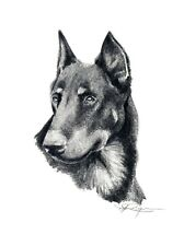 BEAUCERON Pencil Drawing Dog ART 11 X 14 LARGE Print by Artist DJ Rogers w/COA