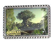 Le Disney Pin✿Animal Kingdom Picture Photo Postcard Silver Frame Tree of Life Le