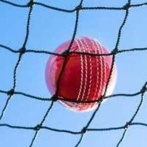 Garden Cricket Net Black 50mm Mesh Ball Stop Practice Cage Batting Pond UK